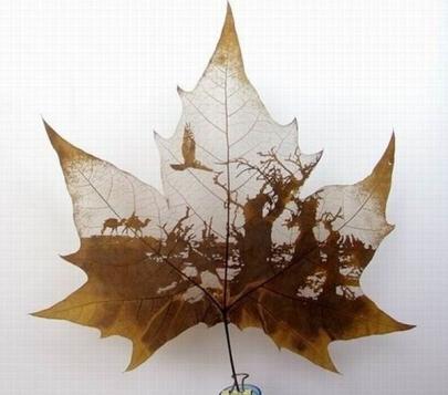 pintura-hojas-05